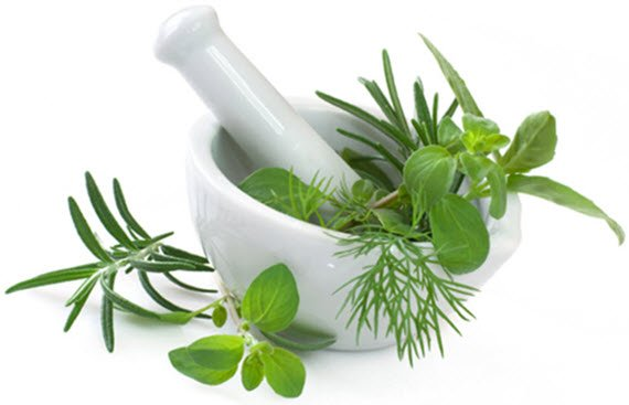 Male Potency Herbs