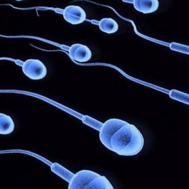How to Improve Sperm Health
